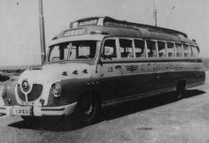 1951 Studebaker bus