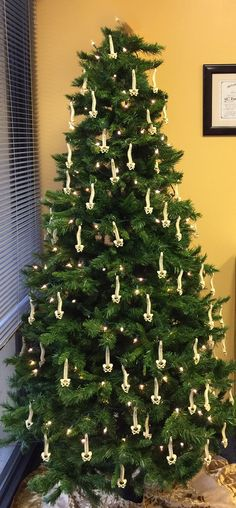 Our clinic chiropractic Christmas Tree.  We give away the spine keychains to our patients in December.                                                                                                                                                                                 More