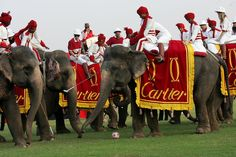 Mohammed Azharuddin in Cartier Holds Elephant Polo Match In Jaipur