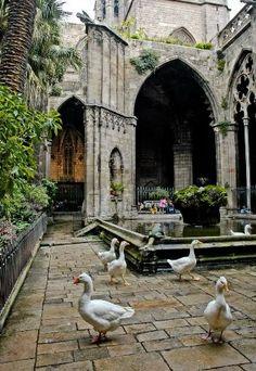 Туризм в Испанию ! Профессиональный гид, многолетний опыт работы в Испании в Барселоне http://barcelonalibre.com/