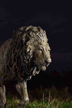 Bronze, signed Hamish Mackie, numbered edition of dated 2019 Lion Walking, Wild Lion, Sculptures, Lion Sculpture, Mark Making, Clay Art, Sculpting, Bronze, Statue