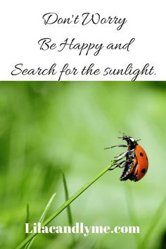 Don't Worry Be Happy and search for the sunlight. Positive blogs for those with chronic illness