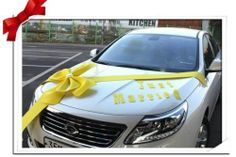 New DIY Wedding Car Decoration Kit Ribbon Decor Wedding Supplies | eBay