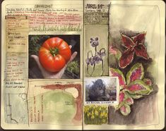 garden journal by amanda kavanagh, via Flickr
