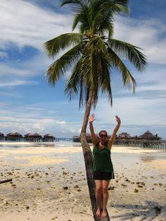 Borneo ... Mabul and Sipadan Islands ... diving was AH-MAZING!