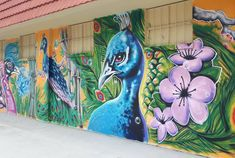 """11 Likes, 1 Comments - Travel Hippi (@travel_hippi) on Instagram: """"Street art dedicated to Fort Pierce's peacocks. These are no ordinary peafowl, they have lived at…"""""""