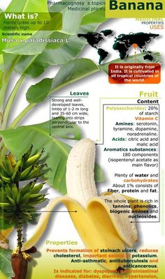 BANANA HELPS!!! #DIDYOUKNOW that BANANA HELPS in curing #Diabetes. Click on the image to know more