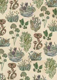 Plant Pattern botanical art - Katie Scott