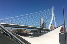 27 May 2017, Rotterdam