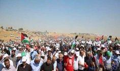 """آلاف العرب في إسرائيل يشاركون في مسيرة """"العودة"""": شارك آلاف من العرب داخل إسرائيل، اليوم الثلاثاء، في مسيرة في قرية الكابري المهدمة رافعين…"""