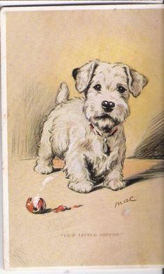 Dog-Terrier Puppy artist signed Mac.Lucy Dawson m662