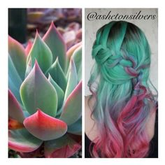 Mint green, blue purple, pink and red hair! #pravanavivids, #pravana... ❤ liked on Polyvore featuring accessories, hair accessories, blue hair accessories, purple hair accessories, red hair accessories, silver hair accessories and pink hair accessories