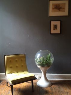 A personal favorite from my Etsy shop https://www.etsy.com/listing/468485999/mid-century-modern-terrarium-modern