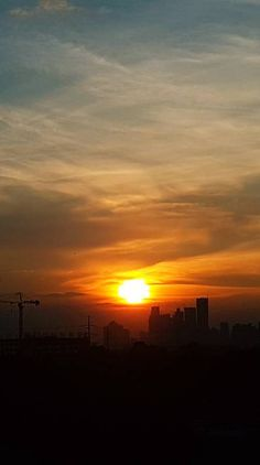 Search free Ringtones and Wallpapers on Zedge and personalize your phone to suit you. Edge City, City Sunset, Free Ringtones, Yellow Flowers, Wallpaper, Pictures, Outdoor, Photos, Outdoors