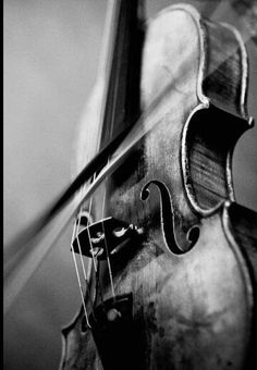 New Music Instruments Photography Orchestra Violin 68 Ideas Violin Art, Violin Music, Violin Drawing, Violin Tattoo, Violin Painting, Black White Photos, Black And White Photography, Photo Black, Musica Celestial