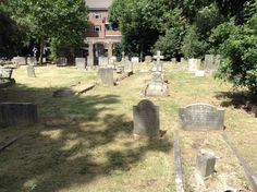 View of numerous tombs in Brompton Cemetery, London, England, with unreadable inscriptions.   There is a 'military section' in the cemetery, however we could not locate it due to the excessive weed growth in most of the cemetery.