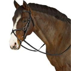 Hoofdstel Romeo+zwarte teugels Horse Bridle, Horses, Animals, Horse, Animales, Animaux, Animal, Animais