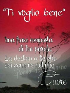 Ti voglio bene... Italian Memes, Love You, Neon Signs, Humor, Life, Mamma, Snoopy, Heart, Nighty Night