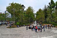 Alameda central. Central grove.