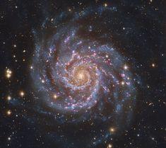 M74: The Perfect Spiral - an island universe of about 100 billion stars, 32 million light-years away toward the constellation Pisces.  (credit & copyright: Descubre Foundation, Calar Alto Observatory, OAUV, DSA, V. Peris (OAUV), J. L. Lamadrid (CEFCA), J. Harvey (SSRO), S. Mazlin (SSRO), I. Rodriguez (PTeam), O. L. (PTeam), J. Conejero (PixInsight))