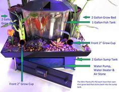 5 Gallon Aquaponics System.  432 Flood and Drain cycles a day!   Super Clean, Crystal Clear Water.  ​The Perfect Betta Fish Tank!  Never any Nitrates, Ammonia or Nitrites. Just add 1 cup of water a day.
