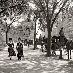 New York City 1900 Vintage NYC photo.