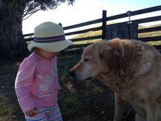 Yenni Ranch  Rosie and Tony   Sweet Little Farm Friends