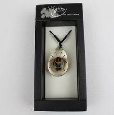 Real Insect 'Crab Beetle' Clear Necklace