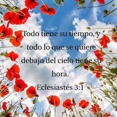 Todo al tiempo de Dios!!!
