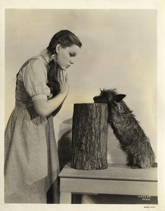 The Wizard of Oz ~ Dorothy and Toto, 1939  OZ was on every Fall. Used to like it but yr after yr got a bit tired.