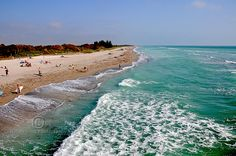 Venice Beach! Condo is located here, surrounded by great beaches, restaurants (Sharkys!) and shopping!