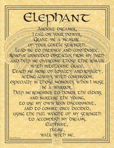 Elephant Prayer Poster-AzureGreen