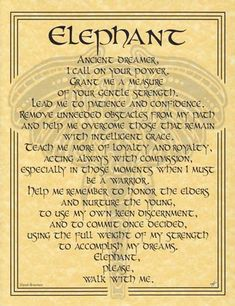 Elephant Prayer Poster-AzureGreen