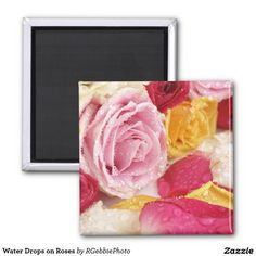Water Drops on Roses 2 Inch Square Magnet - $4.45 - Water Drops on Roses 2 Inch Square Magnet - by #RGebbiePhoto @ #zazzle - #Rose #Flower #Beautiful - A beautiful bouquet of open faced red, white, yellow and pink roses over cut petals. Sprinkled with water to add texture and depth, this beautiful photo is sure to bring a smile to lovers of all kinds!