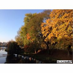 Entendre le bruit de la rivière, le vent dans les feuilles d'automne, le crissement des pas en forêt… parce qu'entendre est vital, nous avons créé Clin d'œil Audio.  #clindoeil #clindoeilopticiens #clindoeilaudio #charleville #charlevillemezieres #ardennes #montolympe #foret #balada #audition