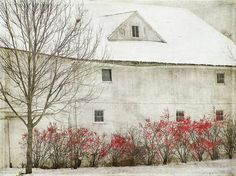 Andrew Wyeth