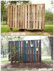 Pallet Garden Wall – Phase II ~ Decorating - All About Pallet Privacy Fences, Wood Pallet Fence, Pallet Garden Walls, Privacy Walls, Wooden Pallets, Pallet Gardening, Fence Garden, Organic Gardening, Balcony Privacy