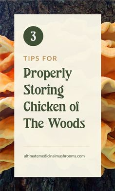 Chicken of the Woods mushrooms are among the wild varities that are really good for cooking and eating. Getting your hands on them mean hunting them out each time, so why not store them for as long as you can? It's quite easy. Here are 3 tips for properly storing Chicken of the Woods to help you get it right. | Discover more about medicinal mushrooms at ultimatemedicinalmushrooms.com #growingmushroomsforprofit #growingmushrooms #medicinalmushroom Chicken Of The Woods, Mushroom Hunting, Growing Mushrooms, Meant To Be, Stuffed Mushrooms, Medicine, Cards Against Humanity, Hands