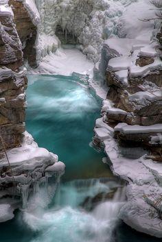 Jasper National Park - Alberta Canada - via Jennifer Manteca's photo on Google+