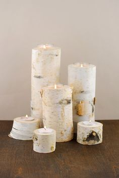 Birch Tree Branch Candle Holders