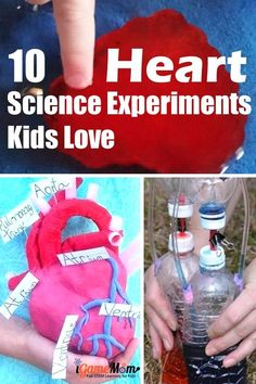 9 heart themed science experiments for kids to learn about heart anatomy physiology and science research methods. Great STEM activities for human body anatomy and physiology unit, for Valentine's Day at school, at home, and homeschool. #ScienceForKids #STEMforKids #ScienceActivities #STEMactivities #iGameMomSTEM #STEMeducation #kidsactivities #ValentineActivities