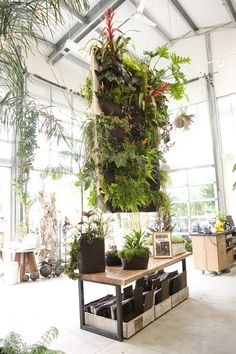 Hanging garden. I grew up loving plants. My mom always talked about the mental and physical necessity of having plants around (calming, clean the air…). Now I live in a tiny condo in the middle of a huge city, and I would LOVE this!!!
