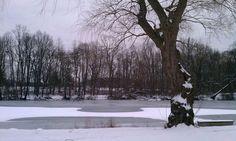 Van Cortlandt Park Bronx, NY - Winter wonderland