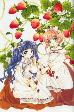 CLAMP - Card Captor Sakura 【Tomoyo & Sakura】