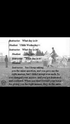 Haha. So my life. Now I know what horses are thinking