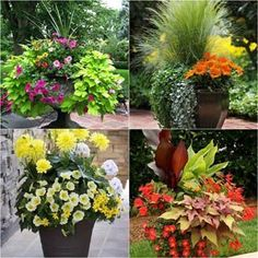 24 stunning container garden designs with plant list for each and lots of designer tips! Create a beautiful colorful garden with these planting recipes! #containergardening