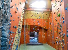 Best rock climbing in NYC from group classes to gyms