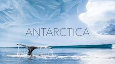 Antarctica, oftewel het zevende continent. De grootste wildernis ter wereld, waar je ogen tekort komt. IJsbergen, walvissen, pinguïns en nog veel meer. Op veel bucketlists van mensen komt Antarctica voor. En terecht, kijk maar. Met name rond minuut 5 en 6 is het ongekend mooi.