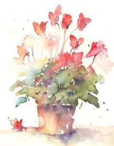Cyclamen by Andrew Geeson Watercolor Journal, Watercolor Artists, Watercolor Cards, Watercolor Landscape, Watercolor Illustration, Watercolour Painting, Watercolor Flowers, Painting & Drawing, Watercolours