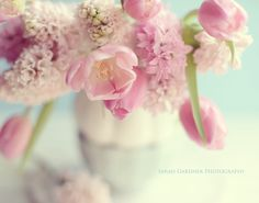 Spring (Photography by Sarah Gardner) Flowers Nature, Love Flowers, Beautiful Flowers, Spring Photography, Floral Photography, Photo Booth Backdrop, Art Blog, Floral Arrangements, Party Time